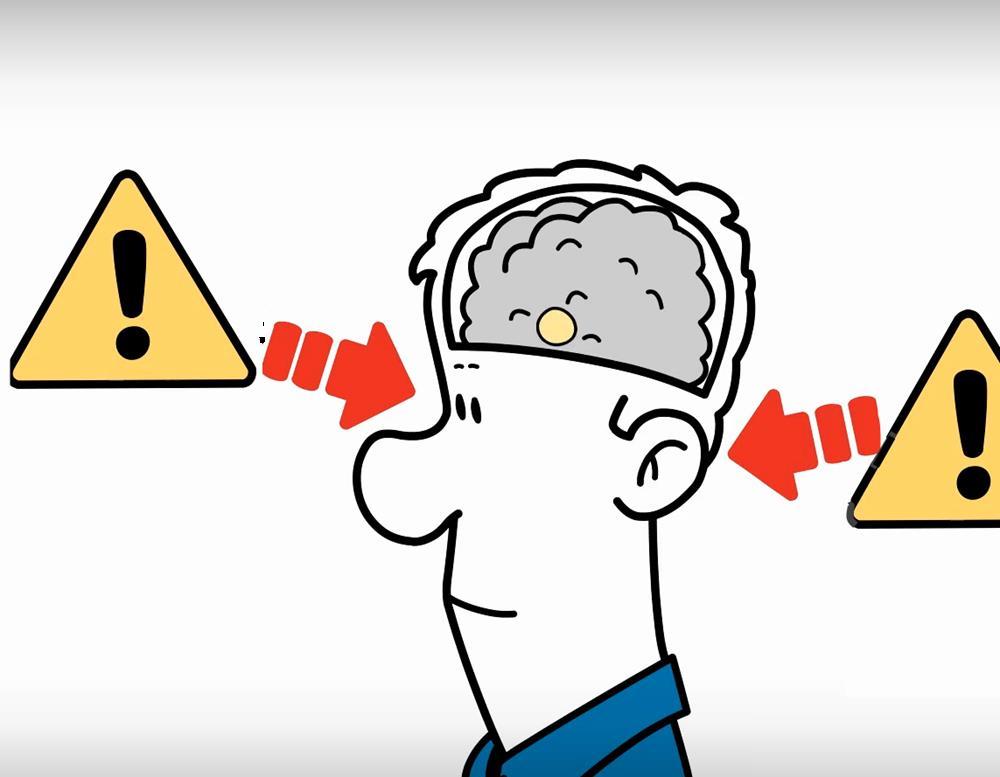 Brain Friendly Leadership - Feedback